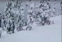 Misurazione neve fresca