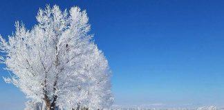 Arriva la neve a bassa quota - Credits sunvalley_sarah