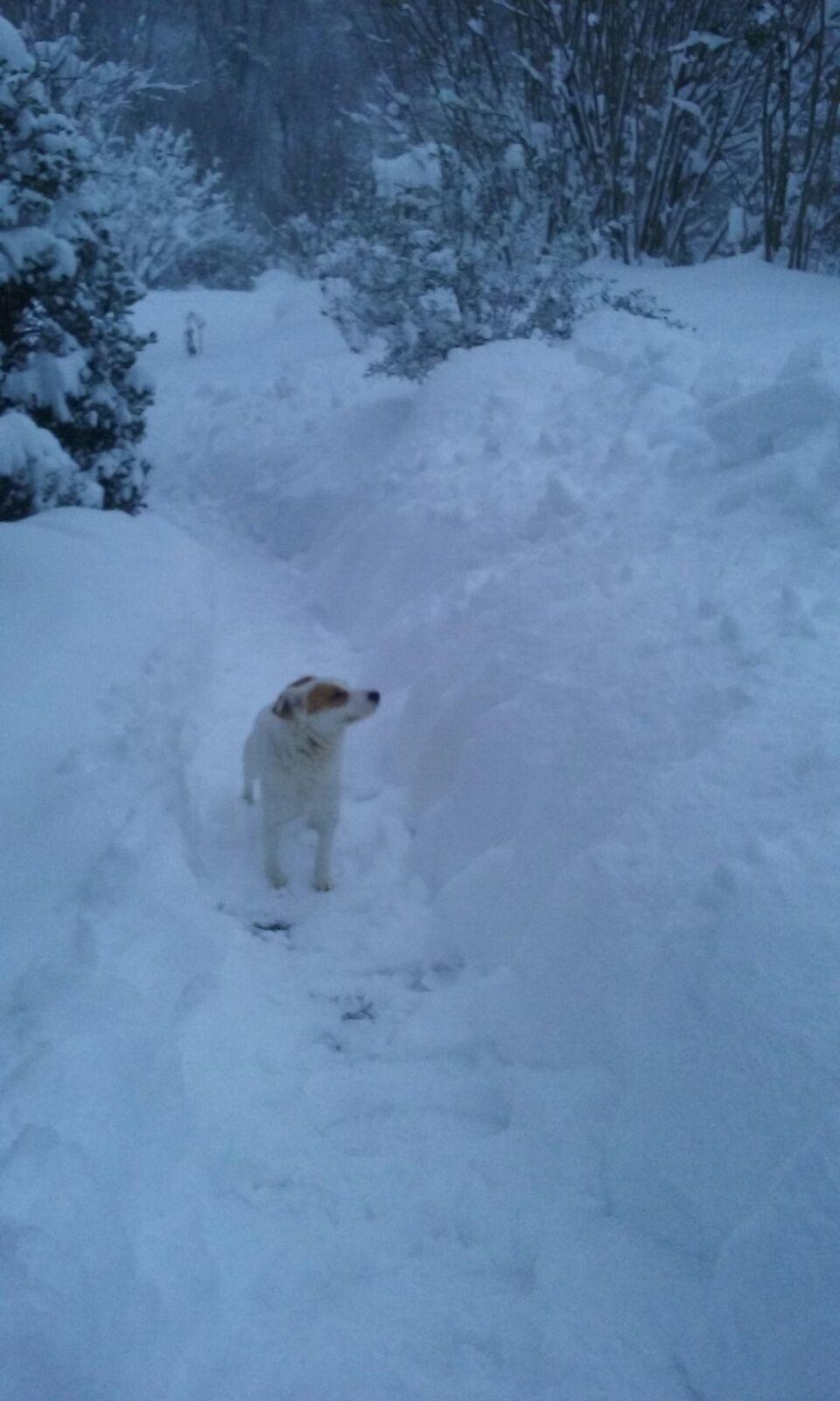 Situazione neve Monte Cavallo