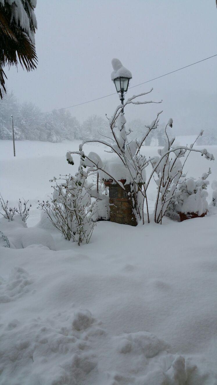 Situazione neve - Val Fornace - frazione Colle di Fiano