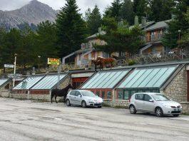 Cavalli sul tetto a Frontignano - Credits: Filippo Campanile